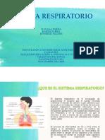SISTEMA RESPIRATORIO (2)