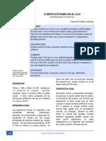 Dialnet-CuerpoExtranoEnElOjo-7070362 (2)