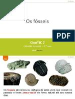 Fósseis e tipo de fósseis 1