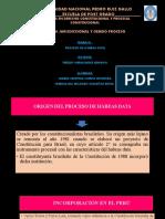 DIAPOS EXPO - HÁBEAS DATA