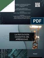 presentación psicologia del desarrollo.pdf