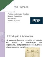 Noções básicas de anatomia humana