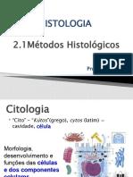 2.1- Métodos histológicos
