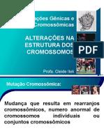 3.1.1 - Alterações nos cromossomos