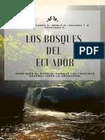 Los Bosques Del Ecuador (2)