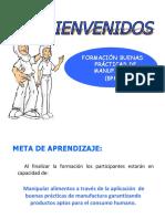 ANEXO 1 INDUCCIÓN BPM.pptx.pdf