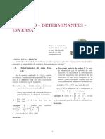 MC_ SEM 1_S2_DETERMINANTE Y MATRIZ INVERSA