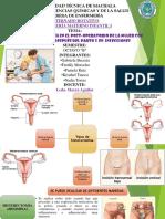 Cuidados de enfermería en el post-operatorio de la mujer