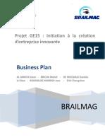 rapport_ge15_brailmag.pdf
