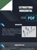 ESTRUCTURA        HORIZONTAL
