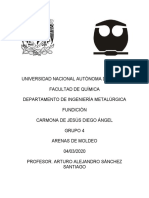 arenas Diego.docx