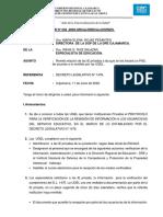 INFORME PROTOCOLO DL 1476 PDF