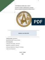 SAN FERNANDO -falta indice y APA1 FIN
