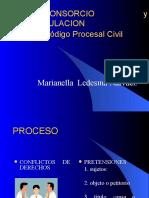 EL LITISCONSORCIO  EN EL CPC.ppt