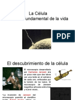teoria_celular_8a-b