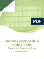 Médula espinal (1) (1).pptx