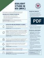 Hazard Mitigation BRIC
