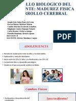 DESARROLLO BIOLOGICO DEL ADOLESCENTE (1)