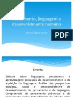 7e9842a4_Pensamento,_linguagem_e_desenvolvimento_humano_-_programação