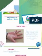 PATOLOGIAS DE MUÑECA 1 (1).pptx