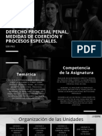TEMARIO D-17 (1).pdf