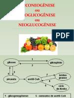 Aula 22- Neoglicogênese, Ciclo de Cori e de alanina.pptx