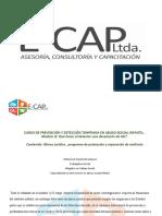 Marco jurídico , programa de protección y reparación de maltrato