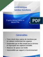 Biomécanique - grandes fonctions.pdf