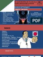 perfiltiroideo-180421034227 (1)_unlocked