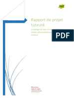 Rapportdepjtut_LPACTEERMOSALAMOURECCALLOCH.pdf