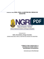 312045713-EDAN-Formato-Municipal.pdf