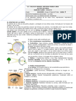 CICLO 4 GUIA 9 BIOLOGIA.pdf