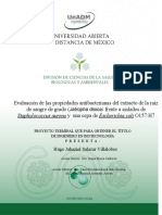 HUGO Proyecto terminal.docx