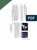 pandemia, naturaleza y la musica impresionista 1ero