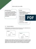 Cálculo1 (1).docx