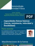Terminología .pdf