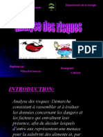 2007  ANALYSE DES RISQUES.ppt