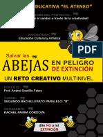 Proyecto ECA_Rachel_Parra