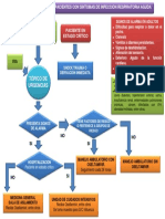 Fluxograma H1N1 - copia.pdf