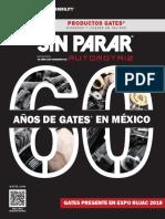 Gates de Mexico