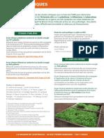 Maison-Artemisia-Cliniques