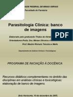 Pranchas Parasitologia