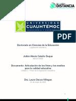Articulación LE y CE_Cataño_Julián