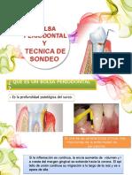 bolsa periodontal y tecnica de sondeo