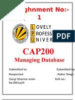 RE3801A29 Homework-1 CAP200 Database 1