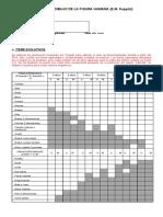 FORMATO-DE-CORRECCION-DFH-PSICOMETRICO.docx