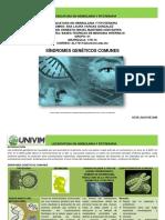 ALVargas_Sindromesgeneticoscomunes.pdf