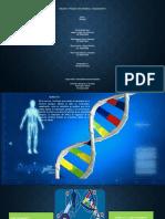 Actividad 7 - Presentación en slideshare que aborde la relación entre genética y comportamiento