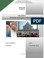 Islamul şi consecinţele politice ale războiului împotriva terorismului