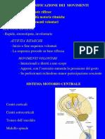 motorio 1 generalità - riflessi(2).pdf